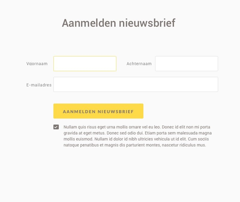Form labels naast input